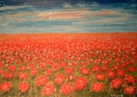 Campo di fiori - olio su tela - 50x70